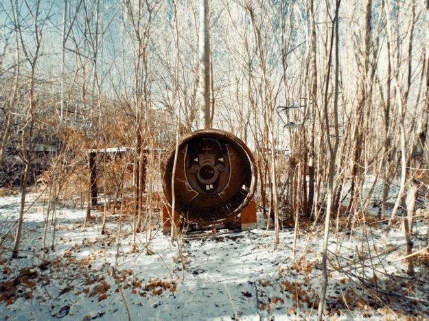 Bunny in a barrel